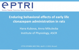 video Enduring behavioral effects of early life clonazepam administration in rats
