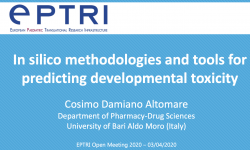 In silico methodologies and tools for predicting developmental toxicity